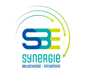 logo Synergie BE
